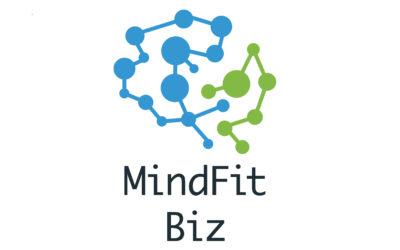 MindFit Biz – inovativan trening uma, za razvoj poslovnih sustava